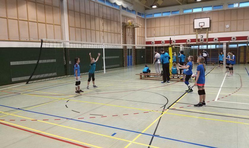 Nachwuchsturnier der Kremstal Volleys